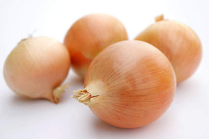 купить семена лука халцедон оптом