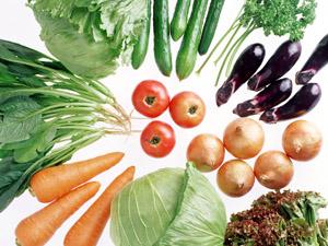 Семена овощей - оптовые продажи